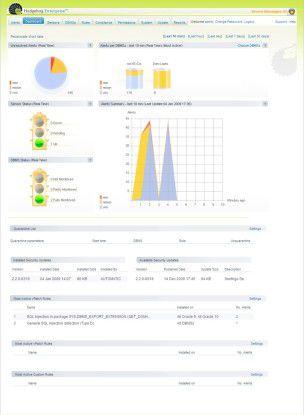 Das Graphical User Interface (GUI) von Sentrigo Hedgehog Enterprise.