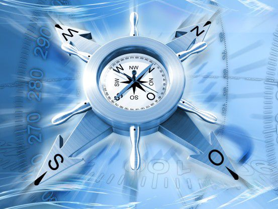 IT-Kompass 2010