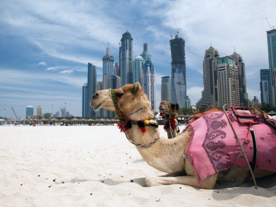 Ob in Dubai, China oder Südamerika: Überall ist hiesiges IT-Know-how gefragt.