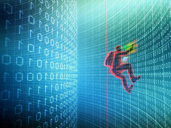 Im Internet hat sich eine florierende Schattenwirtschaft entwickelt.
