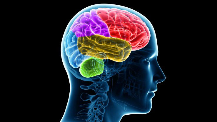 Dem Gehirn auf der Spur: Was vor einigen Jahren noch wie ein Wunder wirkte, entschlüsselt die Wissenschaft nun mehr und mehr.