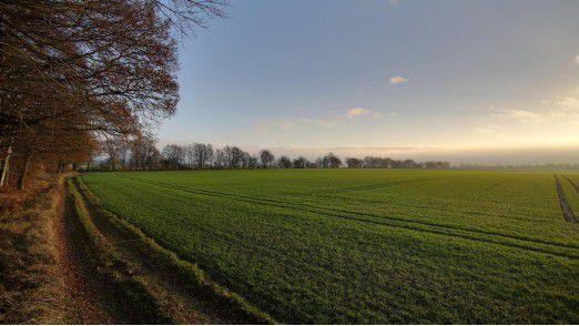 Mecklenburg-Vorpommern: Die schiere Fläche und die geringe Besiedelungsdichte stellt den Netzausbau vor eine Herausforderung.