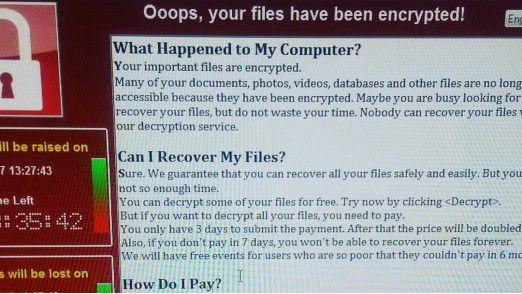 Screenshot: So sieht es aus, wenn der Computer befallen ist.