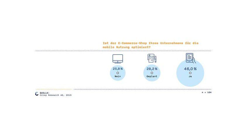 Bei weniger als der Hälfte der Befragten ist der E-Commerce-Shop für eine mobile Nutzung optimiert.