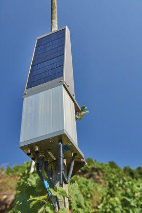 Die Sensor-Plattformen sind autark, da sie von Solarzellen mit Energie versorgt werden.