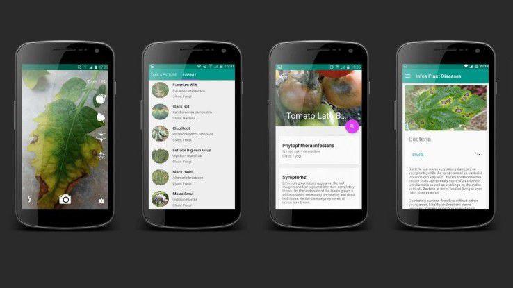 Mit der App Plantix von Peat sollen sich Pflanzenkrankheiten und Schädlingsbefall schnell und einfach per Foto erkennen lassen.