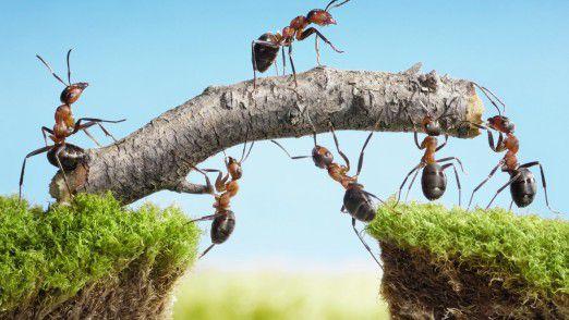 Am Ende wollen Enterprise Architects vor allem die Zusammenarbeit zwischen IT und Business verbessern. Aus einem Besteller-Lieferanten-Verhältnis wird im Idealfall echtes Teamwork.