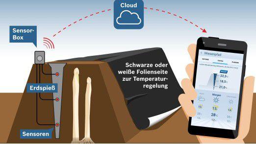 Sensoren messen die Temperaturen im Erddamm. Die Sensor-Box funkt die Daten via Cloud auf das Smartphone des Landwirts.