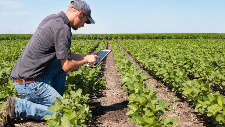 Der IoT-Partner sollte über das entsprechende Branchen-Know-how - hier etwa in Bezug auf die Landwirtschaft verfügen.