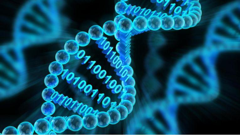 Die DNA trägt bekanntermaßen die gesamte Erbinformation eines Lebewesens. Eine gigantische Mange an Informationen, die generationsübergreifend weitergereicht wird. Daten können im digitalen Geschäftsleben eine ähnliche Funktion übernehmen.