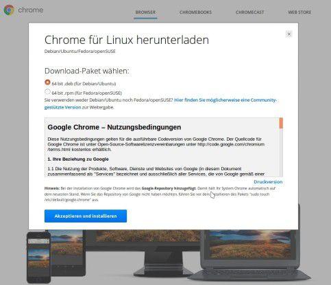 Google Chrome gibt es auch für Linux.