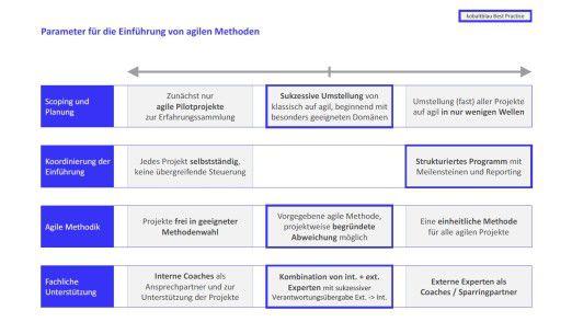 Der Berater Kobaltblau nennt Best Practices für den digitalen Wandel.