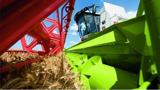 Schnweidwerk einer Claas-Landmaschine beim Ernten von Weizen.