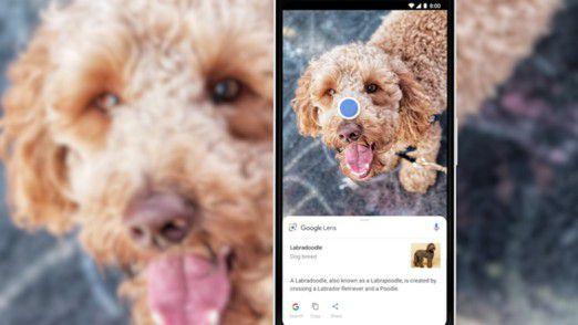 Google will die Smartphone-Kamera verstärkt zu einer Suchmaschine für die reale Welt machen.