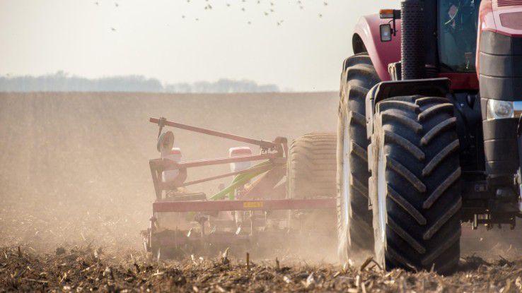 Erntemaschinen gehen nicht zimperlich mit Kartoffeln um.