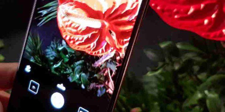 Dank KI: Die Kamera erkennt, dass wir eine Pflanze fotografieren wollen (Icon links über dem Auslöseknopf) und passt Einstellungen an