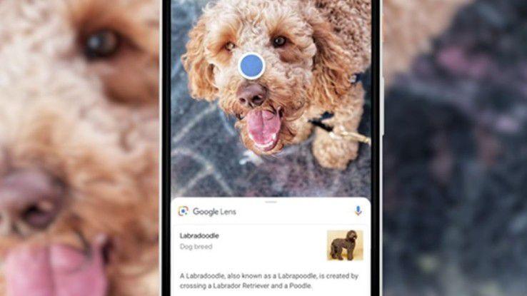 Neue Funktionen bietet Google Photos.
