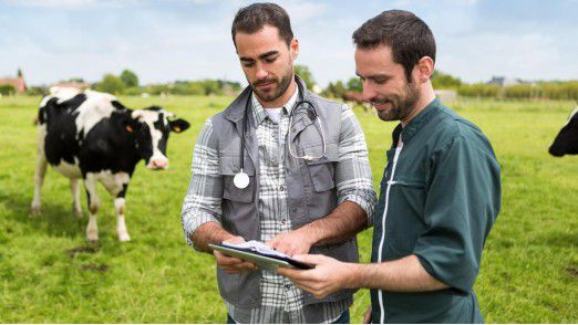 IoT-Lösungen liefern Unternehmen wichtige Erkenntnisse in Echtzeit und sind heute vielseitig einsetzbar - so auch in der Landwirtschaft.