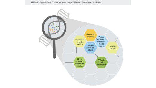 Forrester benennt sieben Merkmale, die für die DNA eines jungen Unternehmens typisch sind.