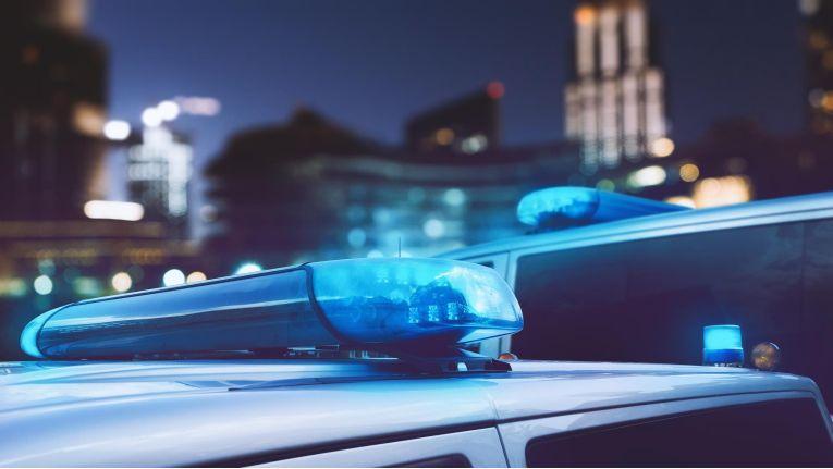 Die Polizei nahm vier junge Männer aus der Region Chemnitz fest.