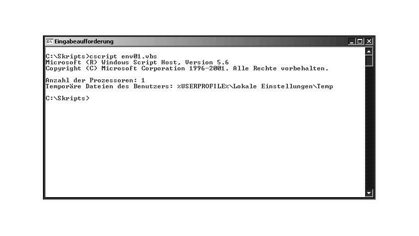 Bild 1: Die Ausgabe von Umgebungsvariablen mit einem Skript.