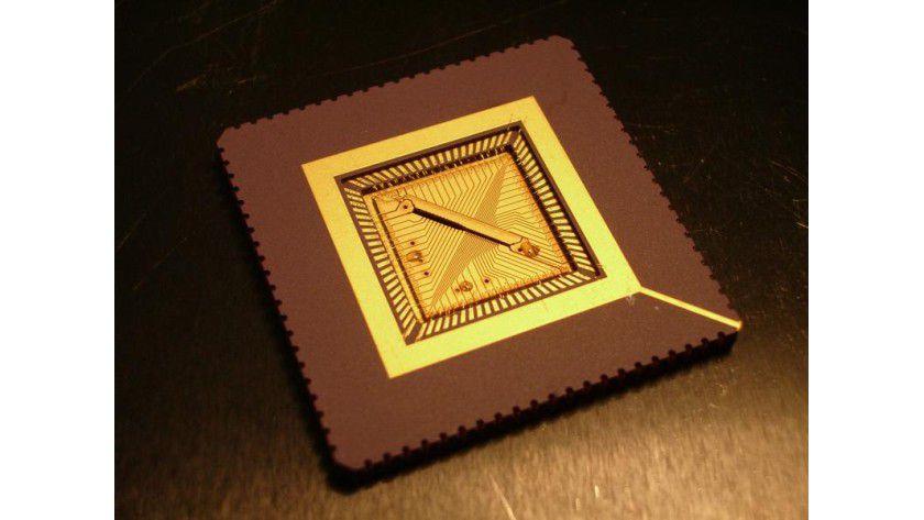Der Mikrochip hat eine Größe von 11 mm x 11 mm und besteht aus 64 einzeln ansteuerbaren Elektroden. Foto: Universität Ulm