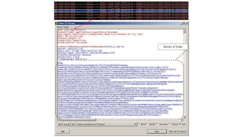Storm-Wurm: Eine Analyse eines Netzwerkpaketes des Storm-Worms. (Quelle: CA)