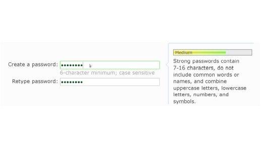 Typische Passwort-Eingabe auf einer Website. Die Wissenschaftler Joseph Bonneau und Soren Preibusch von der University of Cambridge kritisieren, dass der Nutzer zu wenig Hinweise zum Kreieren sicherer Kennwörter erhält.