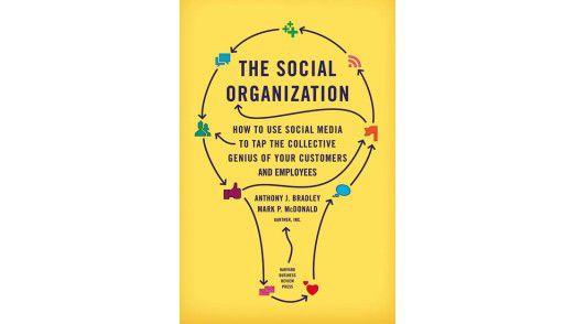 """Das Buch """"The Social Organization"""" ist in der Harvard Business Review Press erschienen. Preis: 28,90 Euro."""