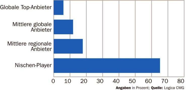 Zwei Drittel der befragten Anwender bevorzugen kleine, spezialisierte Consulting-Firmen.