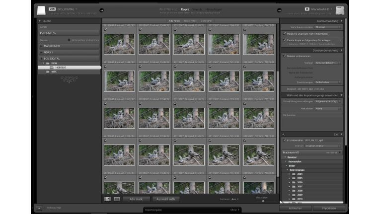 Lightroom 3 - Importdialog
