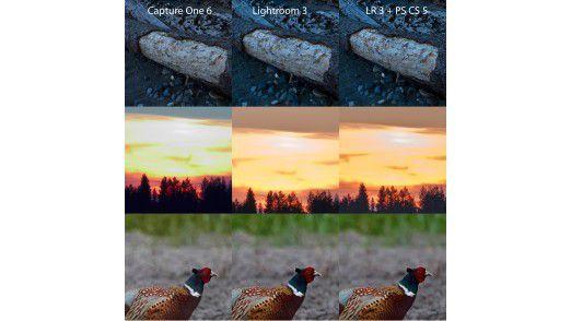 Bildqualität im Vergleich