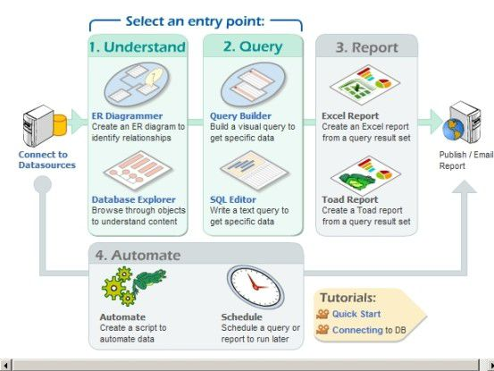Quick-Guide zur Datenanalyse mit Toad.