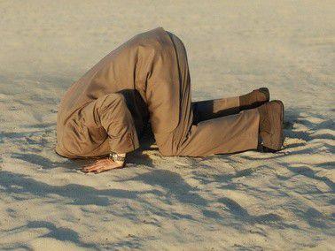 Wer Projekte in den Sand setzt, will sich am liebsten gleich mit vergraben.
