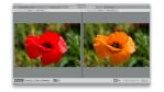 Kleine Helfer: Kaleidoscope für den professionellen Dateiabgleich - Foto: Diego Wyllie