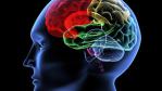 Brain, Loveletter, Sasser, Conficker, Stuxnet: Die Geschichte der digitalen Welt in 20 Viren - Foto: V. Yakobchuk_Fotolia