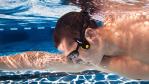 Gadget des Tages: Finis Neptune - Wassermusik für Schwimmer - Foto: Finis