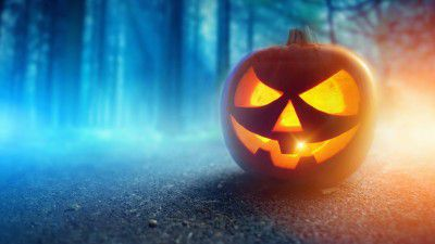 Trick or Treat: Die besten Halloween-Apps - Foto: James Thew - Fotolia.com