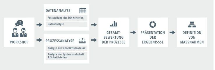 Datenqualität, Datenanalyse, Prozess, Master Data Management