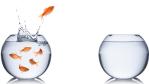 Was Personalexperten raten: Ran an den Job – die besten Karrierestrategien - Foto: stockphoto-graf - Fotolia.com