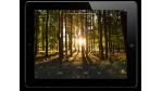 Ab sofort erhältlich: Adobe bringt Lightroom für Apple iPad - Foto: Adobe