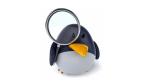 Ubuntu, openSUSE, Fedora & Co.: Empfehlenswerte Linux-Distributionen für Desktops - Foto: julien tromeur, fotolia.com