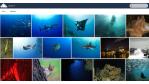 Open-Source- und Linux-Rückblick für KW 27: OwnCloud 7: Veröffentlichungs-Kandidat ist da