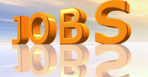 Jobreport: Java-Entwickler weiter gesucht - Foto: Michael Rosskothen - Fotolia.com