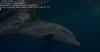 Linux- und Open-Source-Rückblick für KW 34