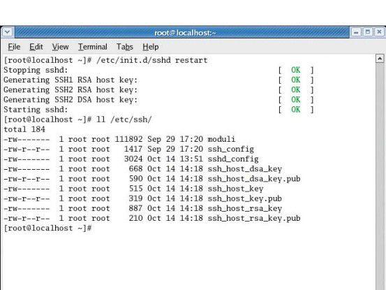 Jeder Secure-Shell-Server erhält einen individuellen Schlu¨ssel