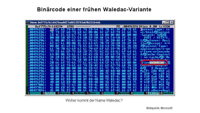 Namensgebung: Der Ursprung von Waledac. (Quelle: Microsoft)