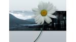 Wallpaper-Special: 59 wunderschöne Desktop-Hintergründe - Foto: http://www.ewallpapers.eu