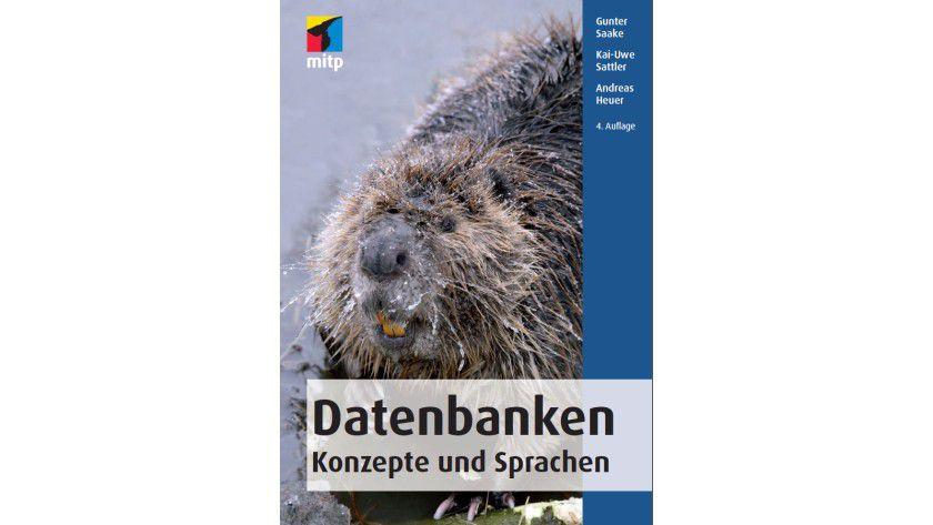 Premium-eBook: 800 Seiten Praxiswissen zum Thema Datenbanken.