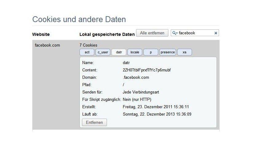 Chrome: Sie können sich alle Facebook-Cookies anzeigen lassen.